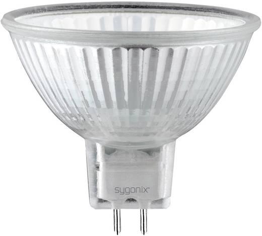 Eco Halogen 49 mm Sygonix 12 V GU5.3 10 W Warm-Weiß EEK: C Reflektor dimmbar 1 St.