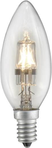 Eco Halogen 97 mm Sygonix 230 V E14 42 W Warm-Weiß EEK: C Kerzenform dimmbar 1 St.