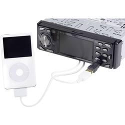 Mini USB kabel auf iPod/USB