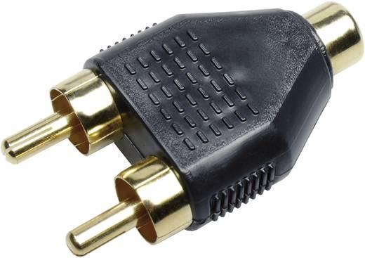 cinch adapter sinuslive y2m 2x cinch stecker 1x cinch buchse kaufen. Black Bedroom Furniture Sets. Home Design Ideas
