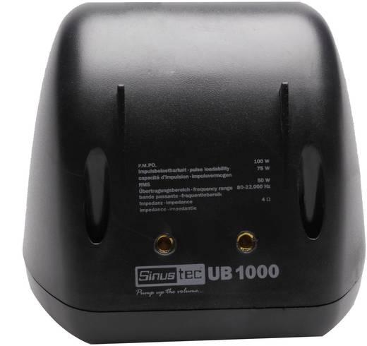 Breitband-Aufbaulautsprecher 100 W Sinustec UB-1000