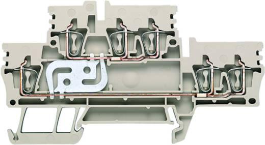 Doppelstock-Reihenklemme ZDK 2.5/3AN V Weidmüller Inhalt: 50 St.