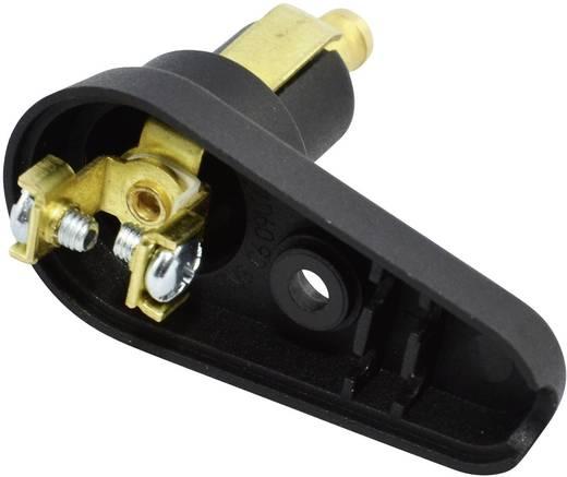 BAAS DIN-Winkelstecker BA12 Belastbarkeit Strom max.=8 A Passend für (Details) Normsteckdosen