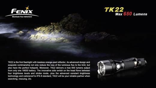 LED Taschenlampe Fenix Fenix TK 22 batteriebetrieben 157 g Schwarz