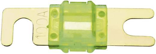 Car-HiFi ANL Sicherung 100 A Sinuslive M-ANL-100 1 St.