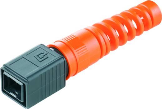 Sensor-/Aktor-Steckverbinder, Zubehör RJ45 Steckergehäuse Weidmüller 1962530000 IE-PH-V04P-BP 10 St.