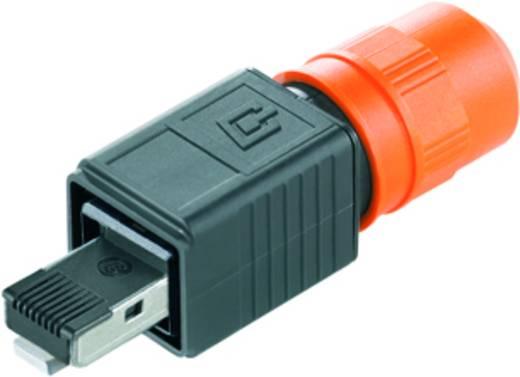 Sensor-/Aktor-Datensteckverbinder Stecker, gerade Weidmüller 1963160000 IE-PS-V04P-RJ45-FH 10 St.