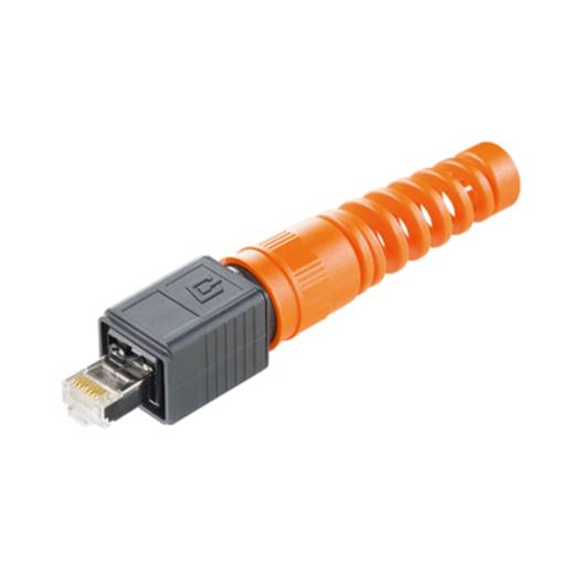 Sensor-/Aktor-Datensteckverbinder Stecker, gerade Weidmüller 1963170000 IE-PS-V04P-RJ45-FH-BP 10 St.