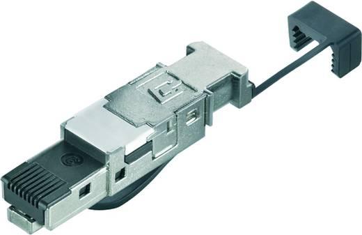 Stecker RJ45 Werkzeuglos Stecker, gerade IE-PS-RJ45-FH-BK IE-PS-RJ45-FH-BK Weidmüller Inhalt: 10 St.