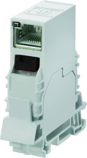 Tragschienen-Outlet, RJ45 RJ45 Geräteflansch IE-TO-RJ45-C Weidmüller Inhalt: 10 St.