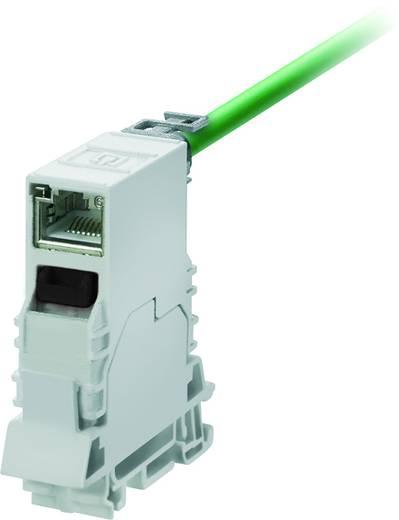 Sensor-/Aktor-Einbausteckverbinder RJ45 Geräteflansch Weidmüller 8946950000 IE-TO-RJ45-FJ-P 10 St.