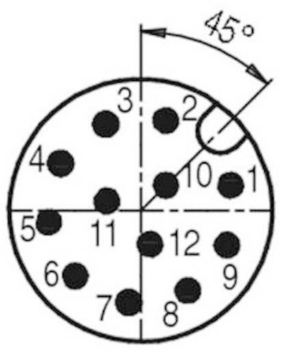 Sensor-/Aktor-Steckverbinder, unkonfektioniert M12 Stecker, gerade Polzahl: 12 Binder 99 1491 812 12 1 St.