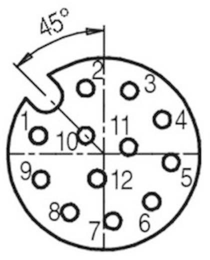 Sensor-/Aktor-Steckverbinder, unkonfektioniert M12 Buchse, gerade Polzahl (RJ): 12 Binder 99 1492 812 12 1 St.