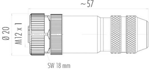 Sensor-/Aktor-Steckverbinder, unkonfektioniert M12 Buchse, gerade Polzahl: 12 Binder 99 1492 812 12 1 St.