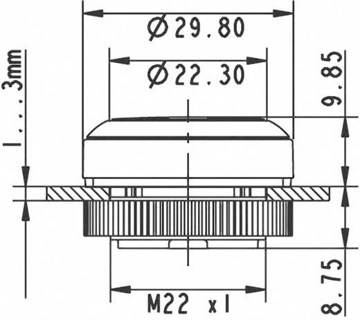 Drucktaster Betätiger flach Weiß RAFI 1.30.270.021/2200 1 St.