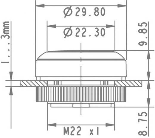Drucktaster Betätiger flach Weiß RAFI RAFIX 22 FS+ 1.30.270.031/2200 1 St.