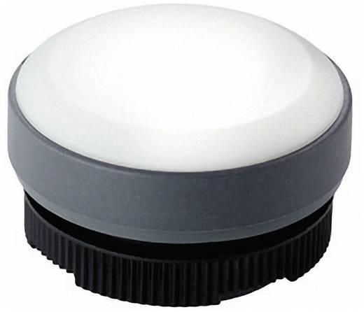Leuchtvorsatz flach Weiß RAFI 1.74.508.001/2200 1 St.