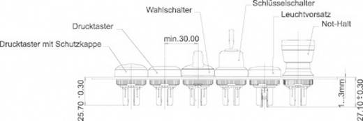 LED-Element Weiß 12 V/DC RAFI 22FS+ 5.05.511.747/0200 1 St.