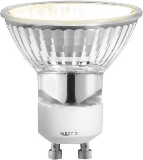 Halogen 55 mm Sygonix 230 V GU10 25 W Warm-Weiß EEK: E Reflektor dimmbar 1 St.
