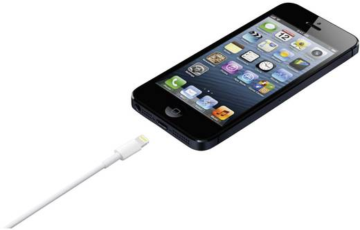 iPod/iPhone/iPad Datenkabel/Ladekabel [1x USB 2.0 Stecker A - 1x Apple Dock-Stecker Lightning] 0.50 m Weiß Apple