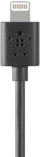 iPad/iPhone/iPod Datenkabel/Ladekabel [1x USB 2.0 Stecker A - 1x Apple Dock-Stecker Lightning] 1.20 m Schwarz Belkin