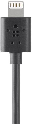 iPad/iPhone/iPod Datenkabel/Ladekabel [1x USB 2.0 Stecker A - 1x Apple Dock-Stecker Lightning] 0.15 m Schwarz Belkin