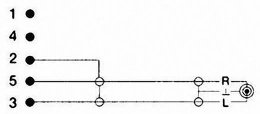 DIN-Anschluss / Klinke Audio Anschlusskabel [1x Diodenstecker 5pol (DIN) - 1x Klinkenstecker 3.5 mm] 1.50 m Schwarz Ham
