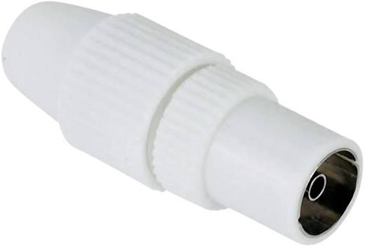 Antennen-Buchse Koax, klemmbar Antenne Steckverbinder Kabel-Durchmesser: 7 mm