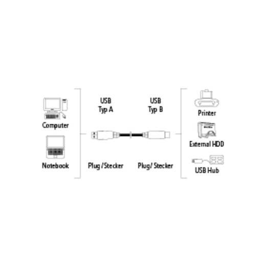 USB 2.0 Anschlusskabel [1x USB 2.0 Stecker A - 1x USB 2.0 Stecker B] 3 m Grau vergoldete Steckkontakte Hama