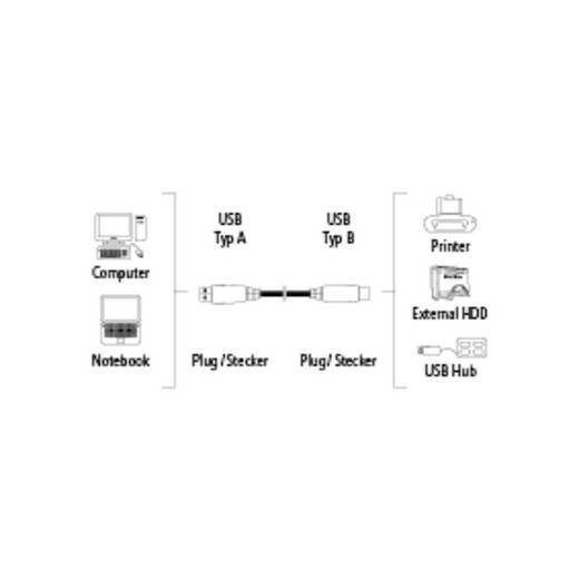 USB 2.0 Anschlusskabel [1x USB 2.0 Stecker A - 1x USB 2.0 Stecker B] 5 m Grau vergoldete Steckkontakte Hama