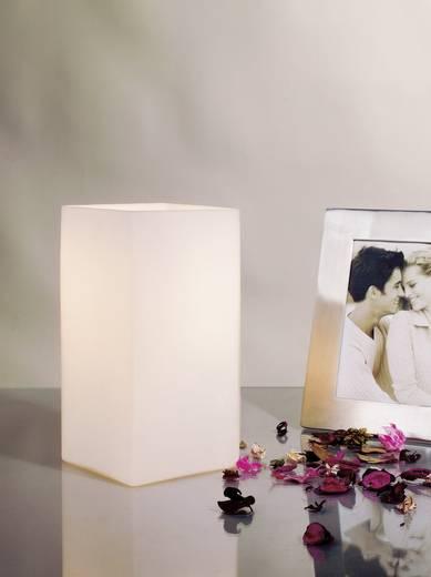 Tischlampe Halogen E14 40 W Paulmann Vilma 77031 Opal
