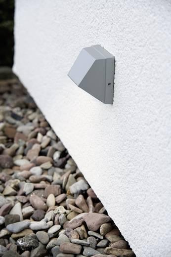 LED-Wandleuchte 1.5 W Kalt-Weiß Paulmann Special Line Wall 99817 Titan