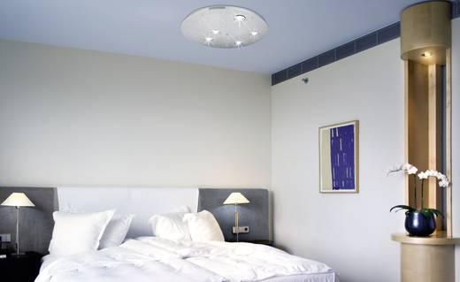 deckenleuchte halogen led gu5 3 66 w paul neuhaus ciel toil 1080 55 stahl kaufen conrad. Black Bedroom Furniture Sets. Home Design Ideas