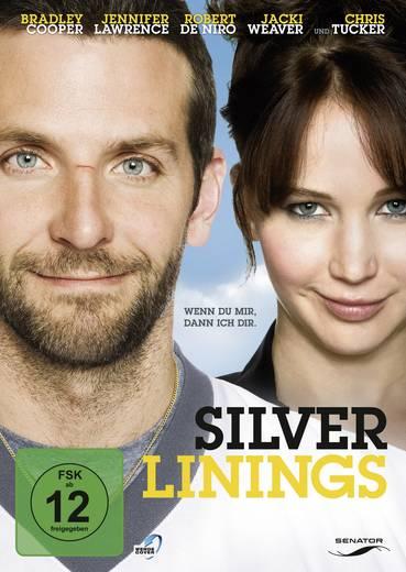 DVD Silver Linings FSK: 12