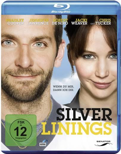 blu-ray Silver Linings FSK: 12
