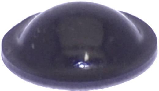 Gerätefuß selbstklebend, rund Schwarz (Ø x H) 10 mm x 3.1 mm TOOLCRAFT PD2010SW 1 St.
