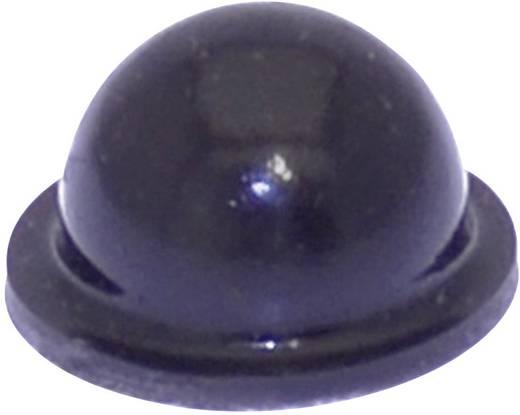 Gerätefuß selbstklebend, rund Schwarz (Ø x H) 9.6 mm x 5.4 mm TOOLCRAFT PD2055SW 1 St.