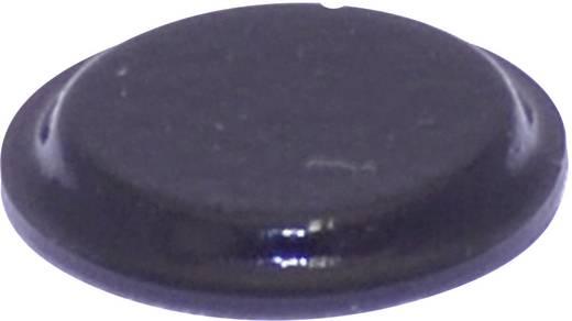 Gerätefuß selbstklebend, rund Schwarz (Ø x H) 12.7 mm x 1.8 mm TOOLCRAFT PD2122SW 1 St.