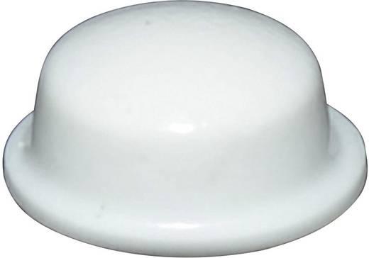 Gerätefuß selbstklebend, rund Weiß (Ø x H) 11.1 mm x 5 mm TOOLCRAFT PD2115W 1 St.