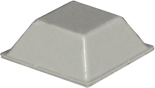 Gerätefuß selbstklebend, quadratisch Grau (L x B x H) 20.5 x 20.5 x 7.5 mm TOOLCRAFT PD2205G 1 St.