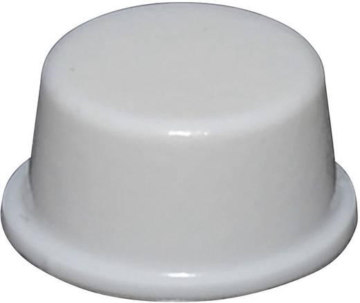 Gerätefuß selbstklebend, rund Weiß (Ø x H) 12.7 mm x 6.2 mm TOOLCRAFT PD2128W 1 St.