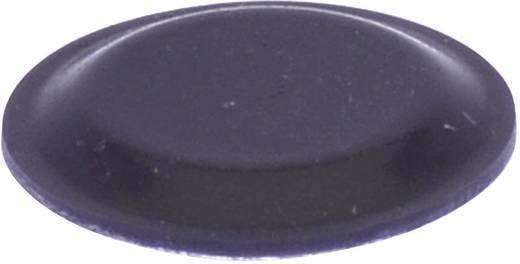 Gerätefuß selbstklebend, rund Schwarz (Ø x H) 19 mm x 1.9 mm TOOLCRAFT PD2191SW 1 St.
