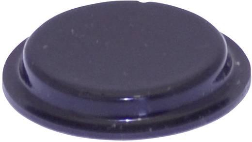 Gerätefuß selbstklebend, rund Schwarz (Ø x H) 19.7 mm x 3 mm TOOLCRAFT PD2204SW 1 St.
