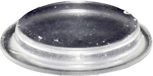 Gerätefuß selbstklebend, rund Transparent (Ø x H) 19.7 mm x 3 mm TOOLCRAFT PD2204C 1 St.