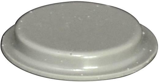 Gerätefuß selbstklebend, rund Grau (Ø x H) 19.7 mm x 3 mm TOOLCRAFT PD2204G 1 St.