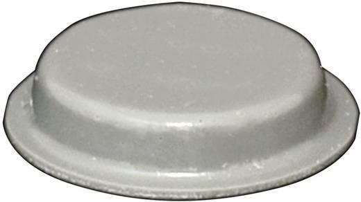 Gerätefuß selbstklebend, rund Grau (Ø x H) 19 mm x 4 mm TOOLCRAFT PD2024G 1 St.
