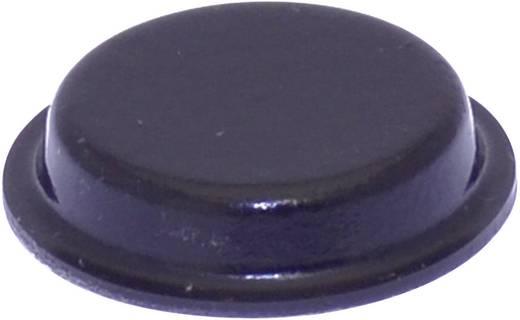 Gerätefuß selbstklebend, rund Schwarz (Ø x H) 19 mm x 4 mm TOOLCRAFT PD2024SW 1 St.