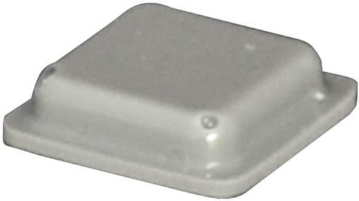 Gerätefuß selbstklebend, quadratisch Grau (L x B x H) 10 x 10 x 2.5 mm TOOLCRAFT PD2100G 1 St.