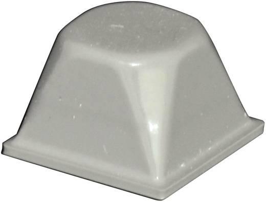 Gerätefuß selbstklebend, rund Grau (Ø x H) 20.5 mm x 13.2 mm TOOLCRAFT PD3206G 1 St.