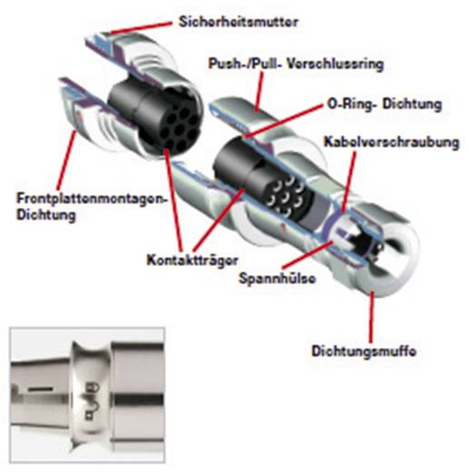 Bulgin PXM6010/02S/ST Rundstecker Kupplung, gerade Serie (Rundsteckverbinder): PXM Gesamtpolzahl: 2 1 St.